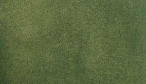 Mata trawiasta - Green Grass - Woodland RG5142