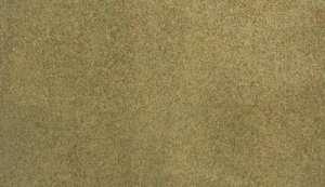 Mata trawiasta - Summer Grass - Woodland RG5144