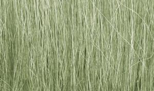 Woodland FG173 Trzcina - Light Green